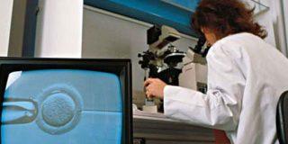 Los tratamientos de fertilidad generan mutaciones genéticas
