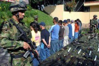 12 Guerrilleros de las FARC se desmovilizan en el departamento del Meta