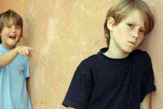 En España no hay una política común de todo el Estado contra el acoso escolar