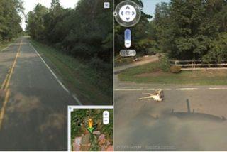 Cazan al coche de Google Maps atropellando a un ciervo