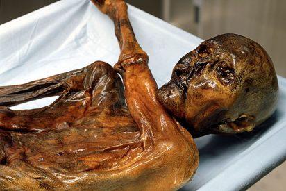 La autopsia confirma que Otzi, el hombre de los hielos, fue asesinado