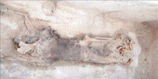 Egipto identifica una momia como la de la reina Sesheshet