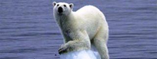 Obama pone en peligro el Ártico