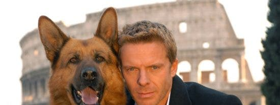 Rex, el perro actor, viaja a Roma en un avión privado para rodar un episodio de su serie