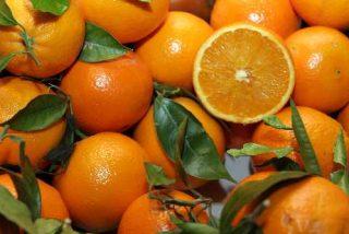 La gripe A dispara un 15% la venta de naranjas fuera de España