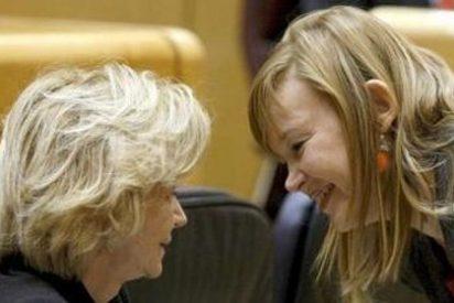 Dos senadores del PSOE votan mal y suman 553 millones al Presupuesto