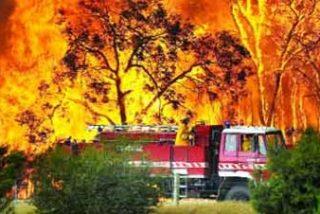 Australia : El fuego avanza sin control en más de 20 frentes tras matar a 181 personas
