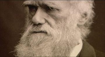 Darwin era un 'gentleman' que hacía novillos y vivía a lo grande