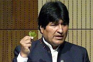 Morales mastica hoja de coca en reunión antidrogas