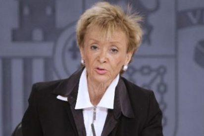 ¿Votó la vicepresidenta De la Vega al PSOE?