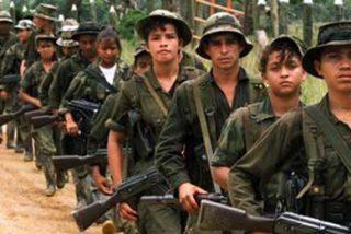 Las FARC tienen al menos siete campamentos en Ecuador, afirma excombatiente