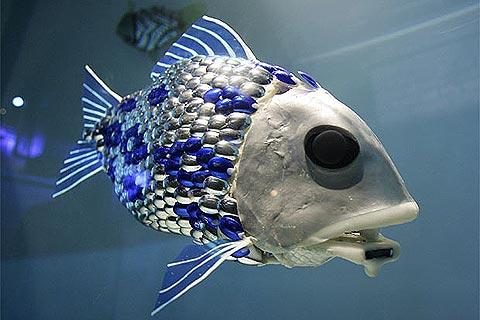 Un pez robot nadará en Asturias en busca de contaminación