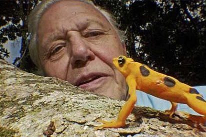 El naturalista Attenborough apoya reducir la población humana para proteger la vida silvestre