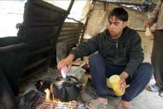 54 inmigrantes indios cumplen hoy un año viviendo en el monte para pedir no ser expulsados