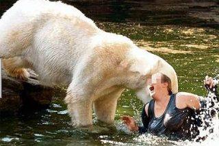 Una mujer se tira a un foso con tres osos polares y logra sobrevivir