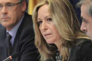 El virus de la gripe porcina llega a España