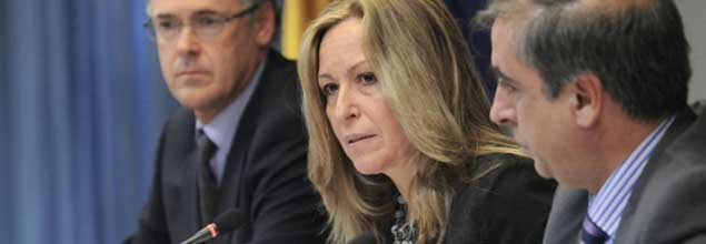 Confirmado en Almansa el primer caso de gripe porcina en España
