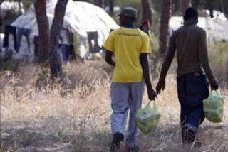SOC reparte unos 2.500 kilos de alimentos a los inmigrantes de los asentamientos de Huelva
