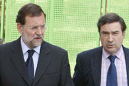 Rajoy se le sube a la chepa a Pedrojota