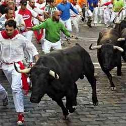 Los toros de El Ventorrillo protagonizan una carrera muy rápida y emocionante