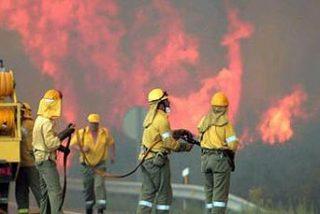 El fuego ya ha arrasado 34.000 hectáreas más que en todo 2008