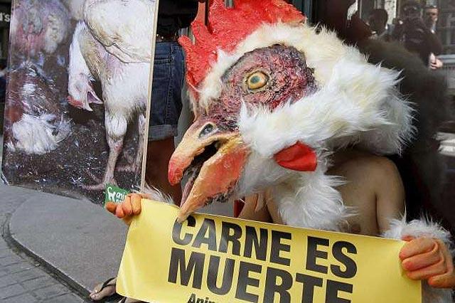 """Se disfraza de gallo y monta el """"pollo"""" ante un restaurante de KFC para protestar contra la explotación animal"""