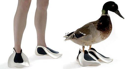 Las 'pato-aletas' de Valentin Vodev