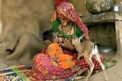 Mujer da de mamar a su hijo y a antílope huérfano
