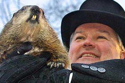 La marmota más famosa de EEUU mantiene su puesto, de momento