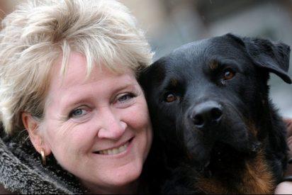 Un juez elogia a un perro que impidió que violaran a una mujer