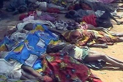 """El Vaticano """"horrorizado y preocupado"""" por la matanza de cristianos en Nigeria"""