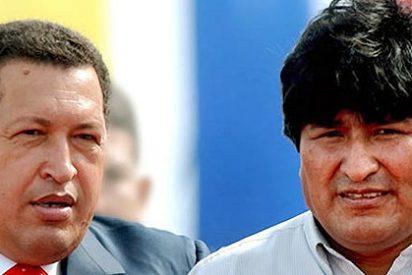 Proponen a Evo Morales para el Premio Nobel de la paz