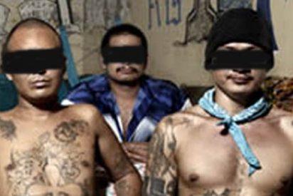 Aumentan bandas juveniles de inmigrantes por la crisis
