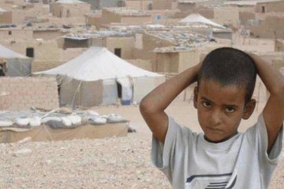 Sahara Occidental o la degradación de la diplomacia española