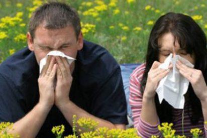Diez consejos prácticos para afrontar la alergia esta primavera