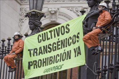 """La Policía levanta el """"campamento"""" de Greenpeace instalado en Medio Ambiente"""