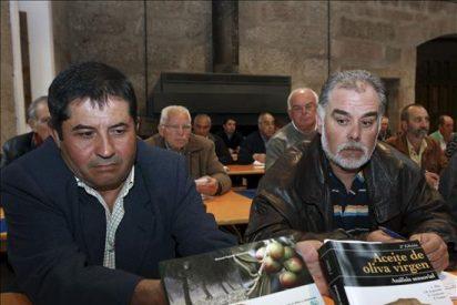 Túnez e Italia, los competidores de España en el mercado de aceite ecológico