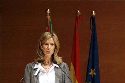 Garmendia condiciona la aportación de España a la viabilidad del proyecto
