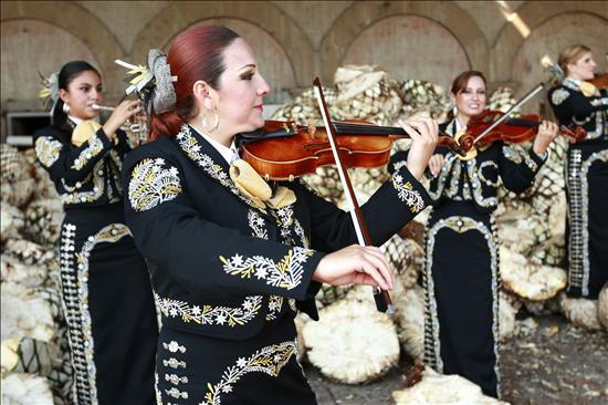 El Nuevo Tecalitlán, estrella del festival de mariachis de Londres