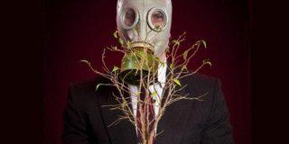 13 plantas que pueden matarte