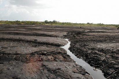 Inauditas formas de vida aparecen en un lago de asfalto