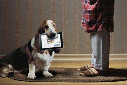 ¿El iPad es un acierto o un timo?