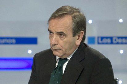 Alonso subraya la legitimidad del Constitucional