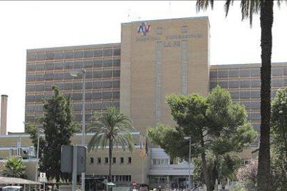 DOCV de la Comunitat Valenciana publica la autorización al Hospital La Fe para trasplante de piernas