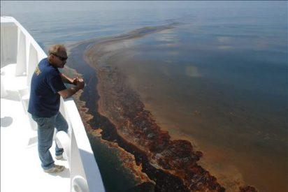 Envían toneladas de pelo natural para limpiar vertido en el Golfo de México