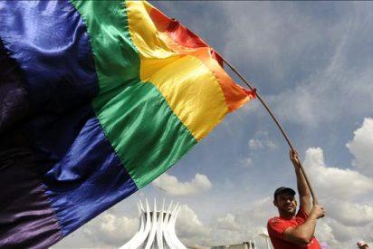 Cientos de homosexuales marchan en Brasilia por la igualdad de derechos