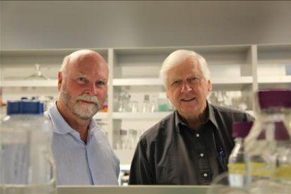 El creador de la primera célula viva sintética propugna nuevas regulaciones para evitar abusos