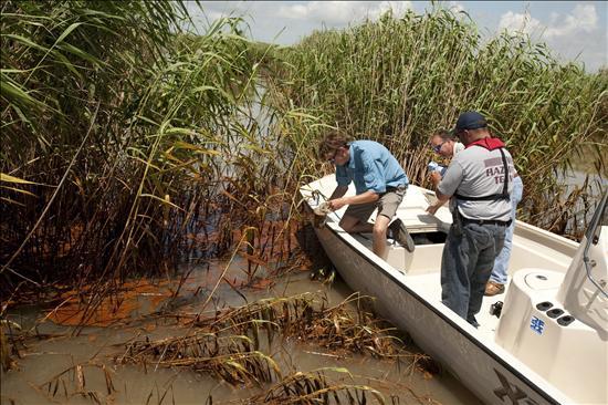 Obama reitera el compromiso con los estados afectados por el derrame en el Golfo de México