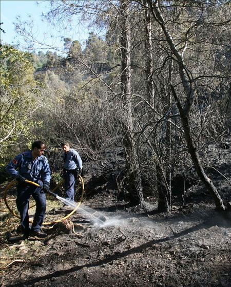 El incendio de Benifallet se encuentra en fase de control