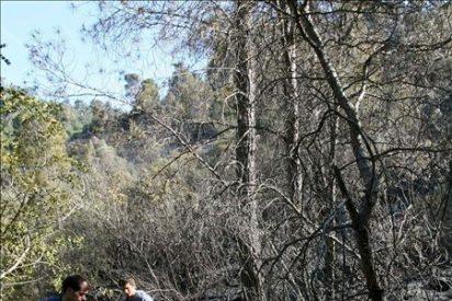 Bomberos dan por extinguido el incendio de Benifallet